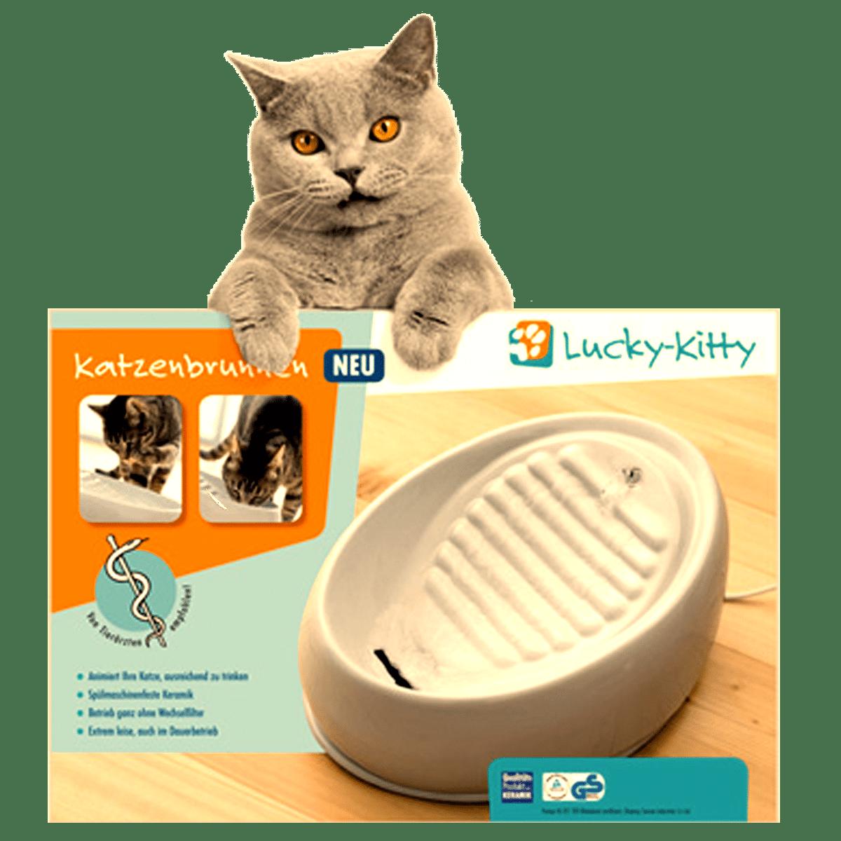 Kattens favorit fontän- stadig-tyst och lätt att diska