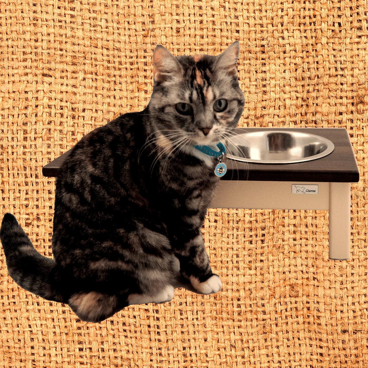 Stilfull och elegant matbar i trä för hund och katt