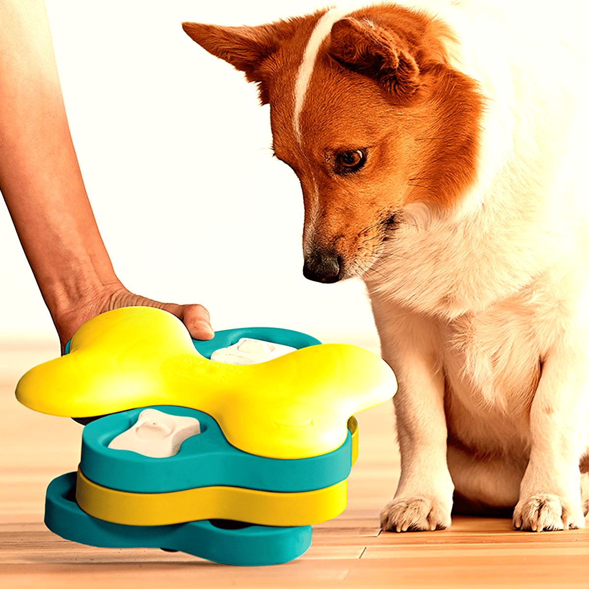 Hundaktivering