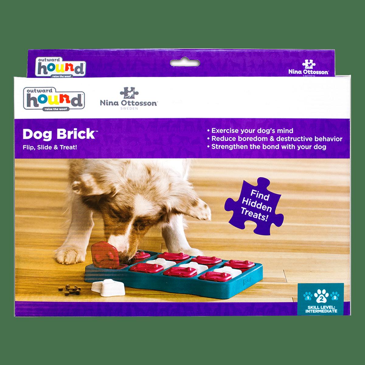 Aktiveringsspel- Dog Brick