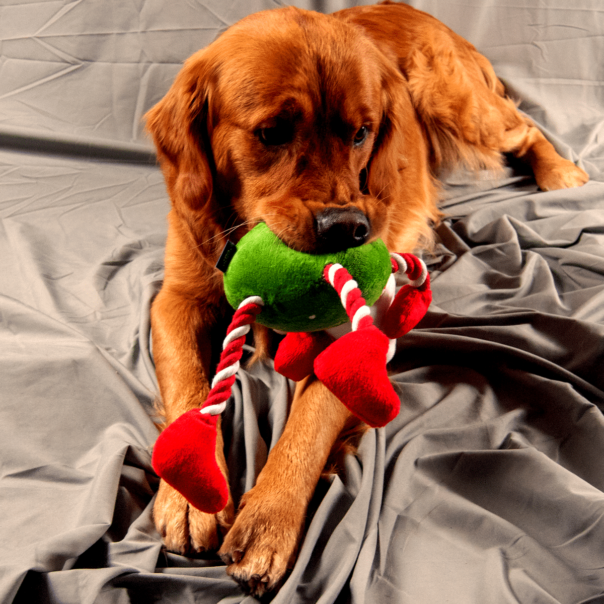 Hundleksak -jultomte med rep till armar och ben