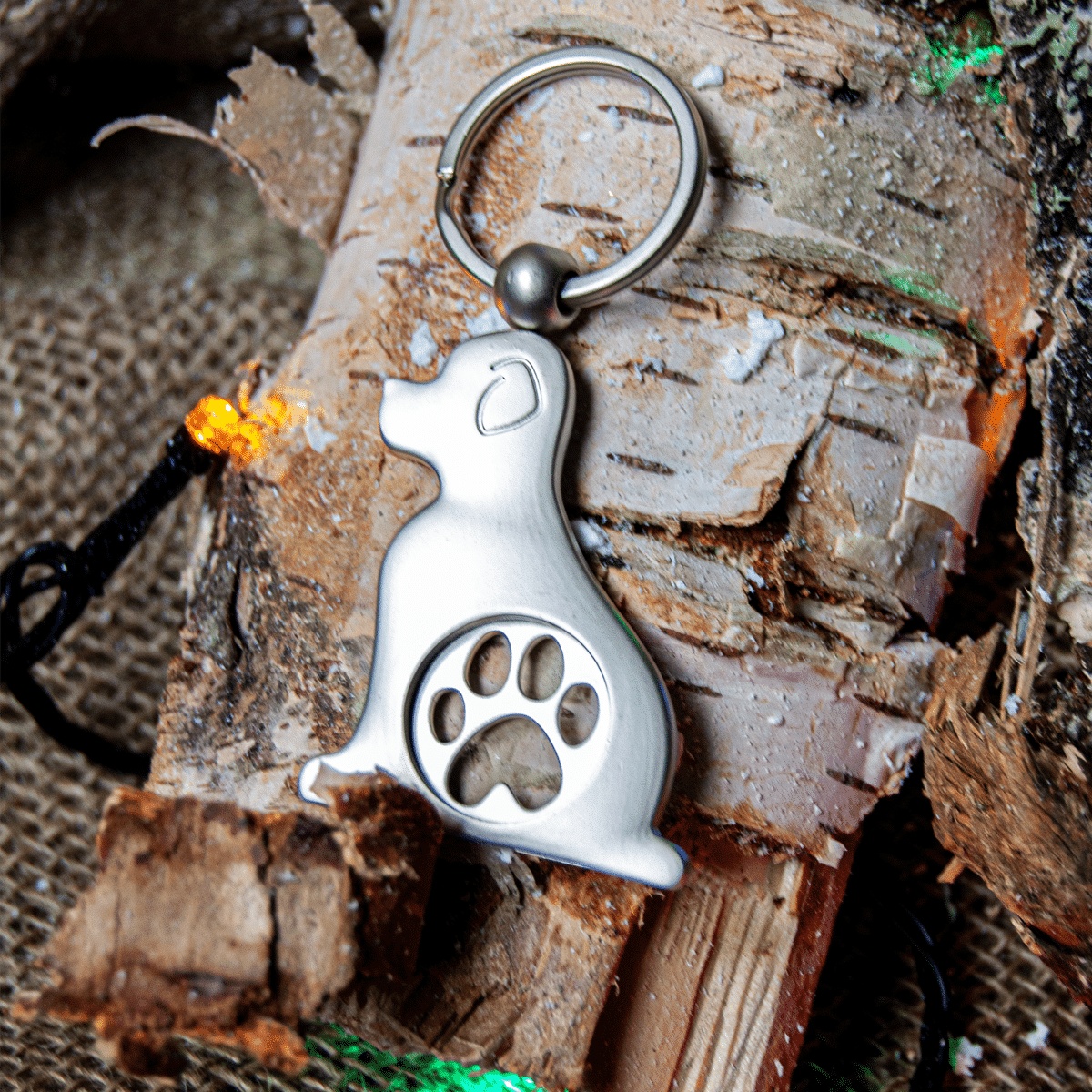 Elegant och stilren nyckelring i gjuten metall för hundägaren