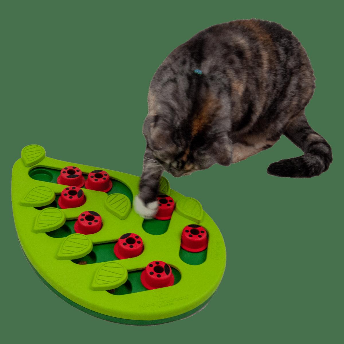 Kattspel- Buggin out puzzle
