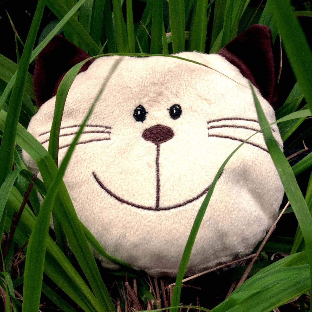 Willy- katten som din katt älskar att leka med