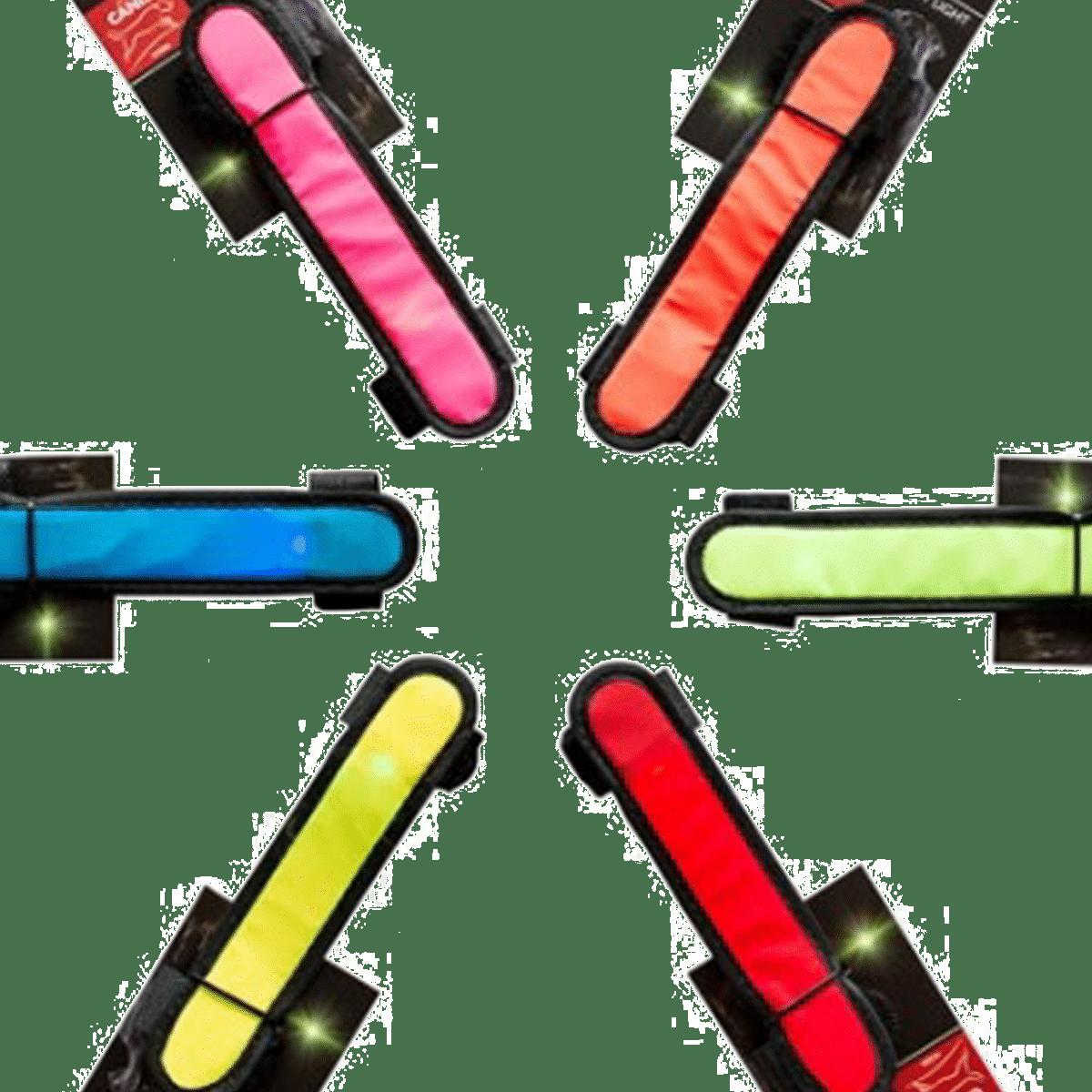 Lampor i flera färger att sätta runt hundkopplet