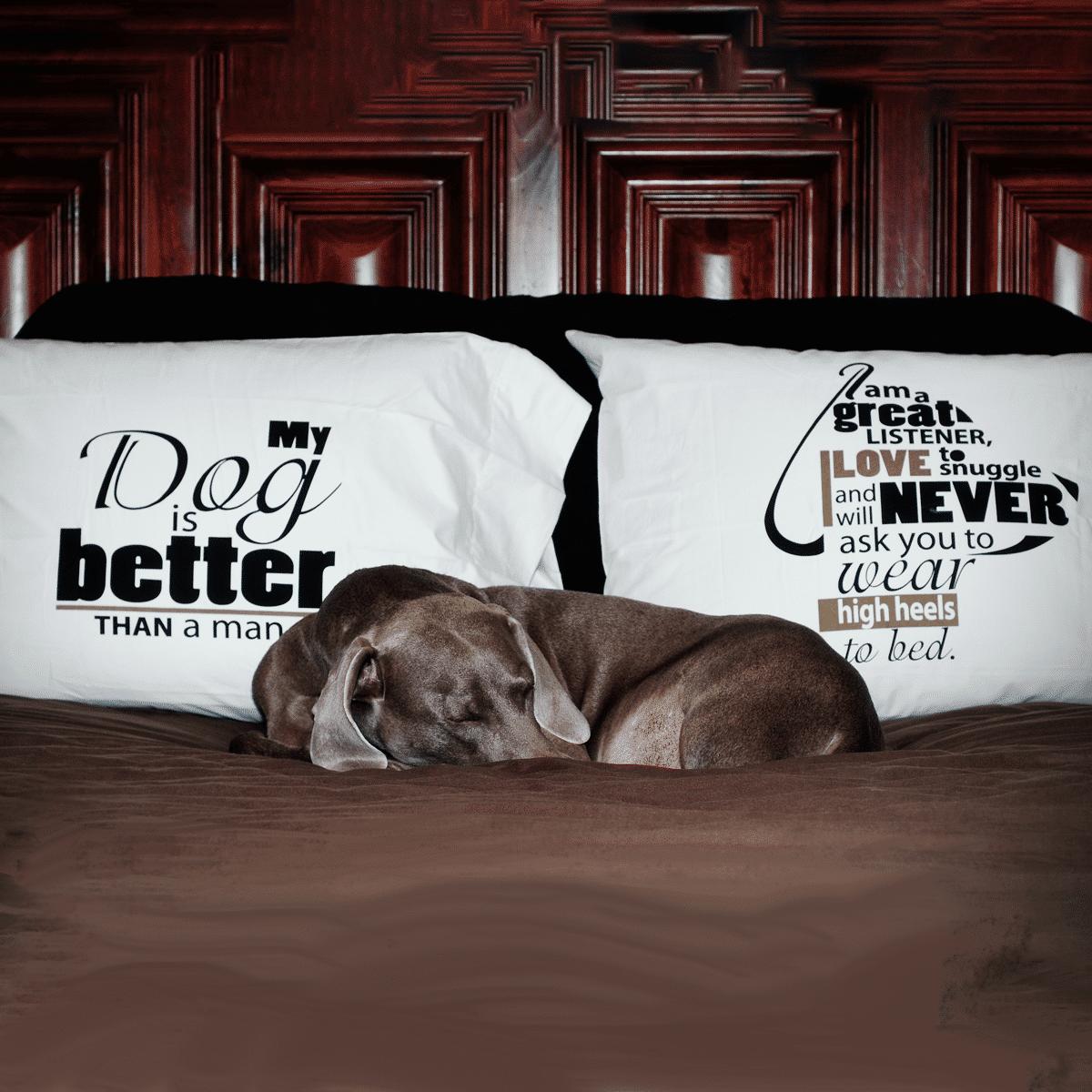 Hunden är bättre än en man - rolig text på stora örngott