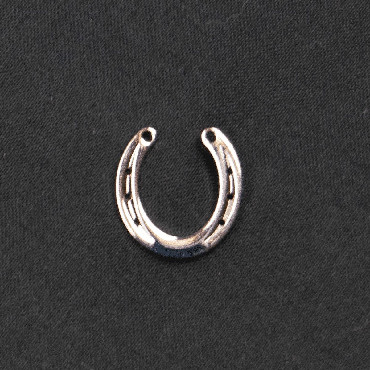 Smycke- en pin med en hästsko