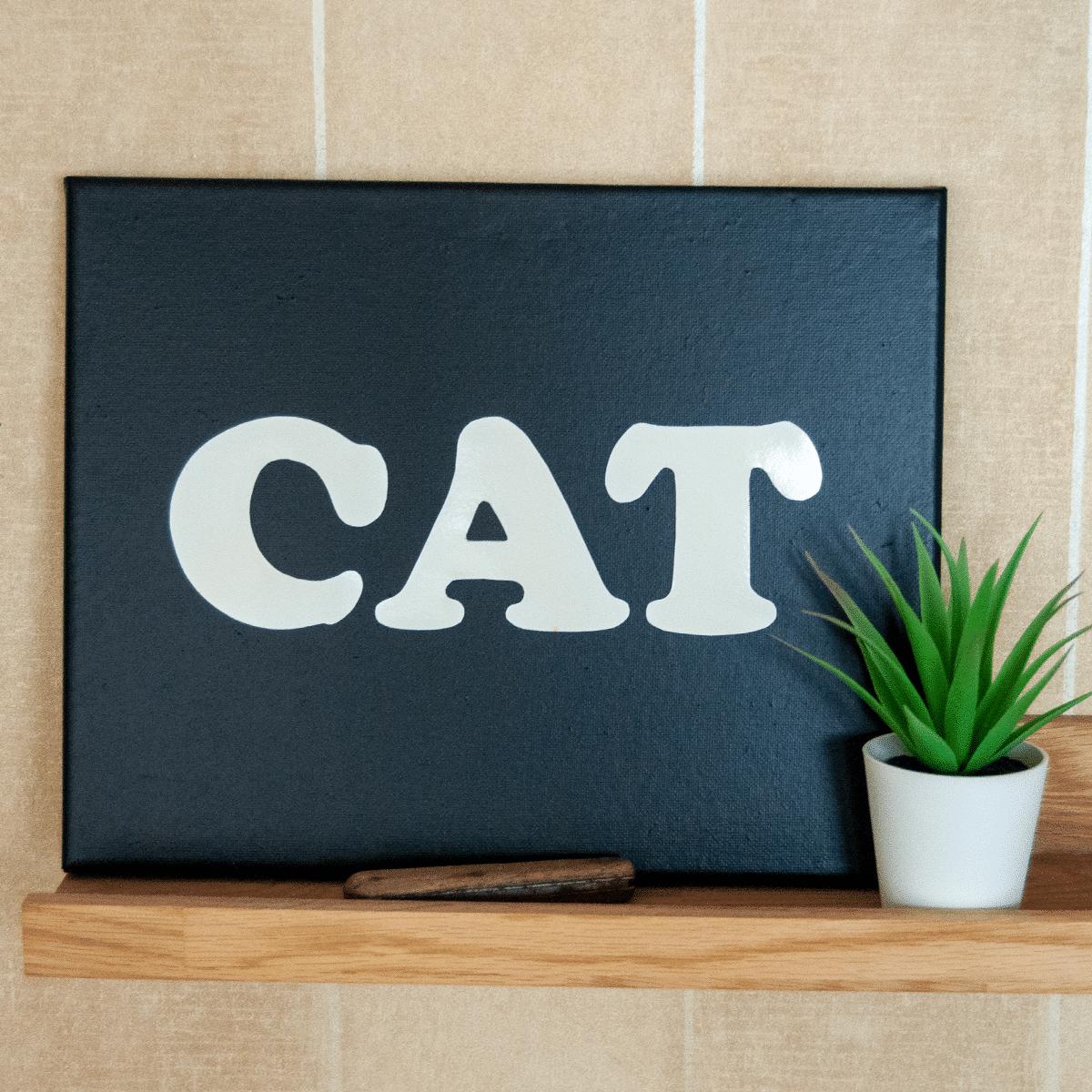 Canvas tavla i svart med ordet CAT i vitt