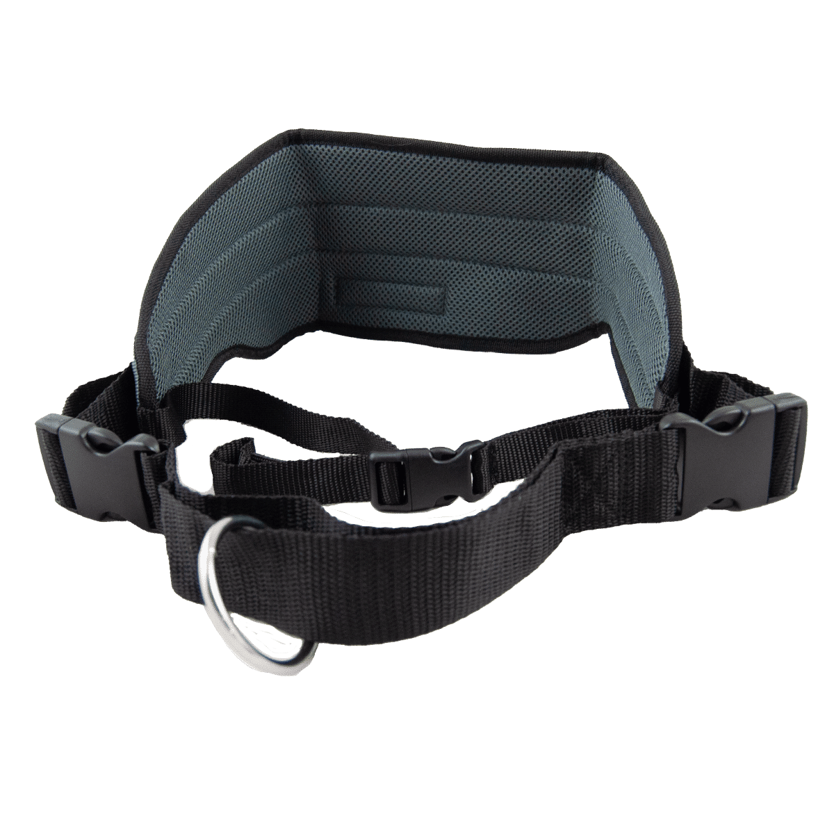 Hundförarbälte när du joggar eller åker skidor med hunden