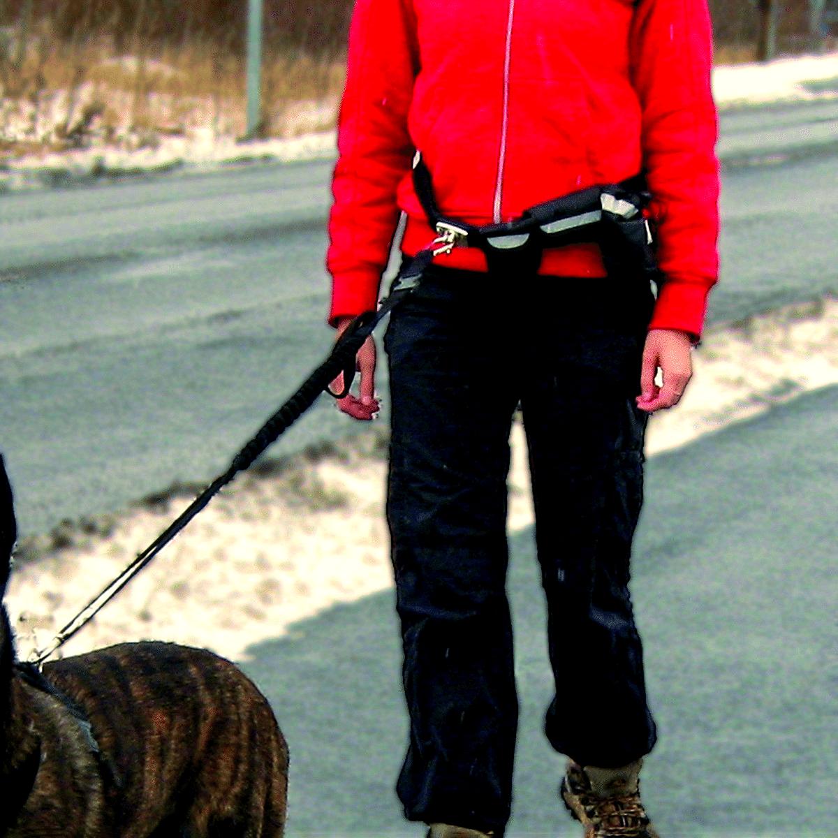 Hundförarbälte- smart sätt att ha händerna fria
